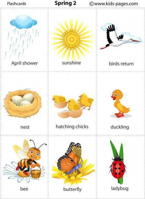 Spring 2 flashcard