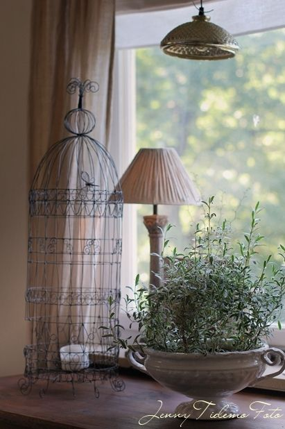 495 best birdcage images on pinterest wire bird boxes and iron wire crafts white decor miniature gardens bird cages wire art rustic style bird houses container gardening cottage style keyboard keysfo Choice Image