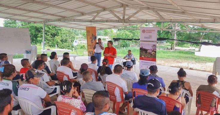 En zonas veredales se crean cooperativas solidarias http://www.hoyesnoticiaenlaguajira.com/2017/12/en-zonas-veredales-se-crean.html