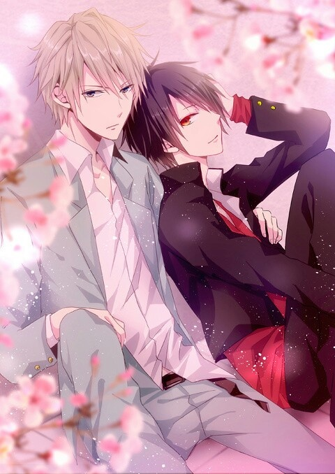 Shizuo & Izaya | Durarara!! #anime #shounen-ai #BL