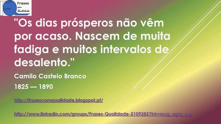 Frase de Camilo Castelo Branco