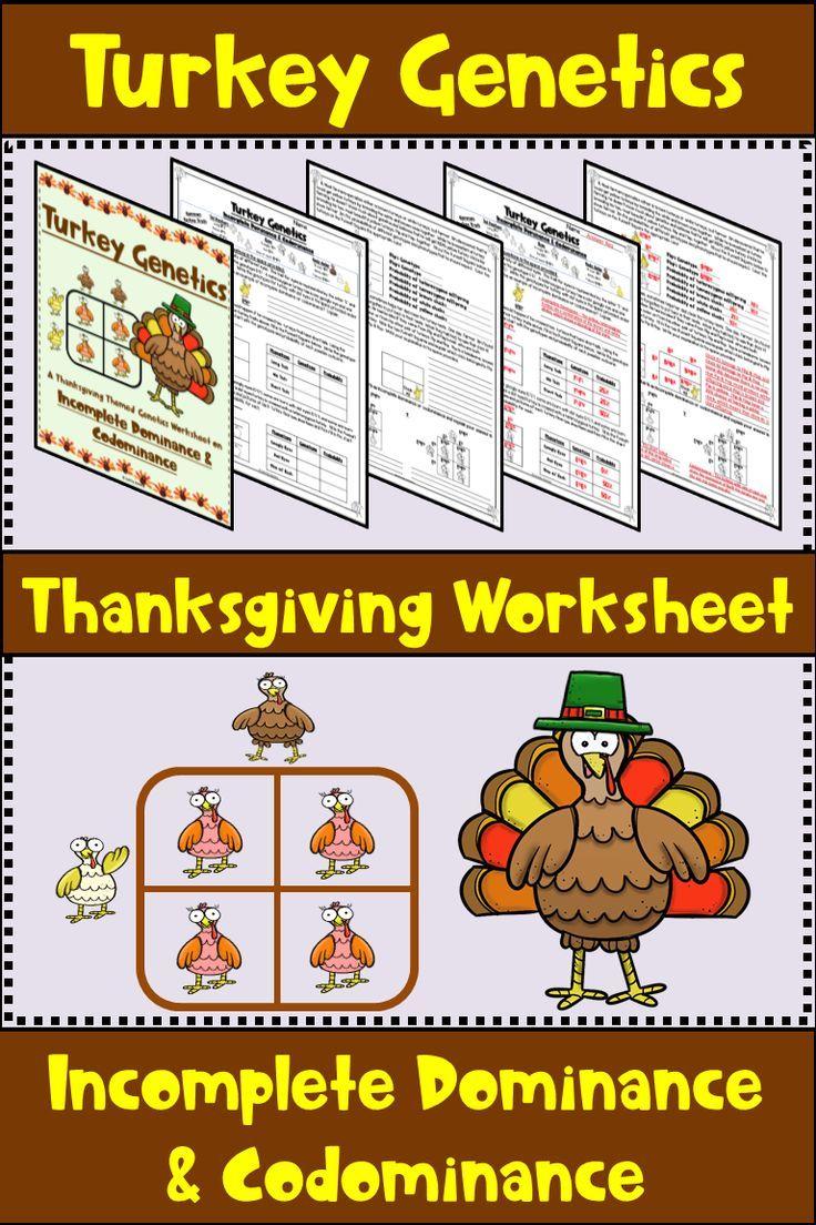 Thanksgiving Punnett Squares Worksheet Practice Punnett Squares Middle School Science Resources Middle School Science Classroom Middle School Science Teacher