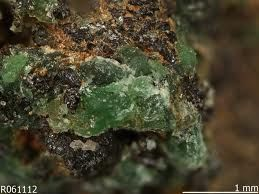 Willemseite. Colour: Light green. Named after Johannes Willemse (1909-1967), Professor of Geology, University of Pretoria (South Africa).Type Locality: Scotia Talc mine, Bon Accord, Barberton District, Mpumalanga Province, South Africa. Year of Discovery: 1968.