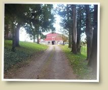 ManoRun Farm