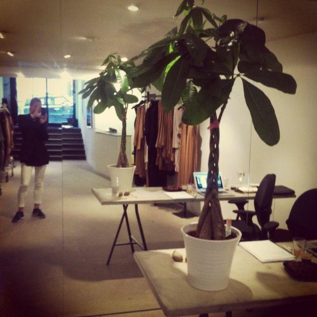 Stylein showroom