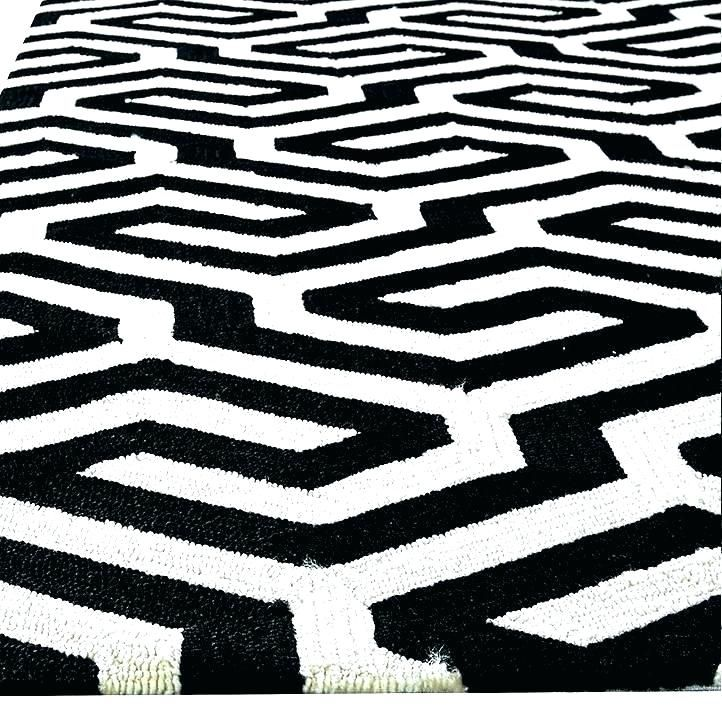 Enchanting Black And White Striped Outdoor Rug Graphics Ideas