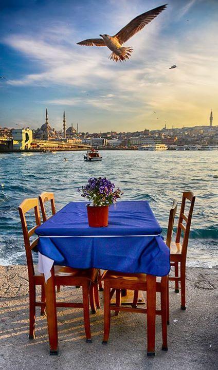 İstanbul ᘡℓvᘠ❉ღϠ₡ღ✻↞❁✦彡●⊱❊⊰✦❁ ڿڰۣ❁ ℓα-ℓα-ℓα вσηηє νιє ♡༺✿༻♡·✳︎· ❀‿ ❀ ·✳︎· MON Sep 19, 2016 ✨ gυяυ ✤ॐ ✧⚜✧ ❦♥⭐♢∘❃♦♡❊ нανє α ηι¢є ∂αу ❊ღ༺✿༻✨♥♫ ~*~ ♪ ♥✫❁✦⊱❊⊰●彡✦❁↠ ஜℓvஜ