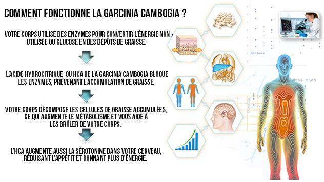 Acheter Garcinia Cambogia