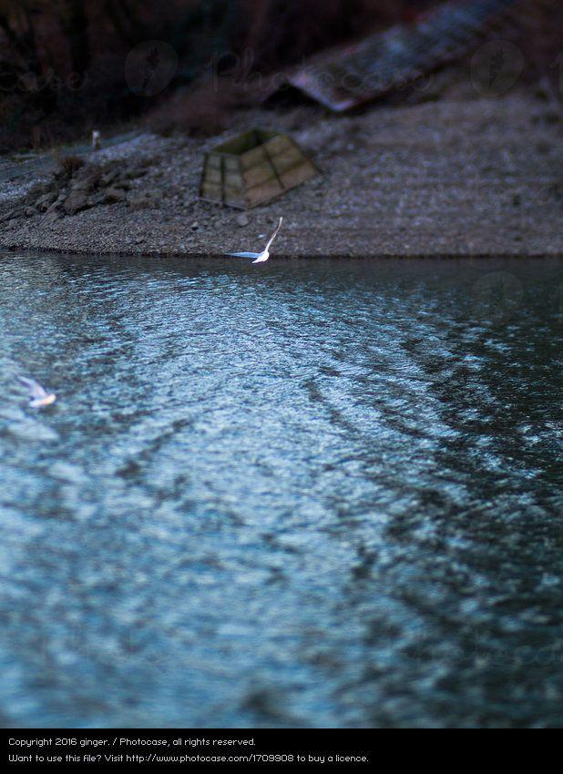 Tlon Die Andere Seite Von Ginger Ein Lizenzfreies Stock Foto Zum Thema Natur Blau Wasser Von Photocase Fotos Herbst Wetter Natur