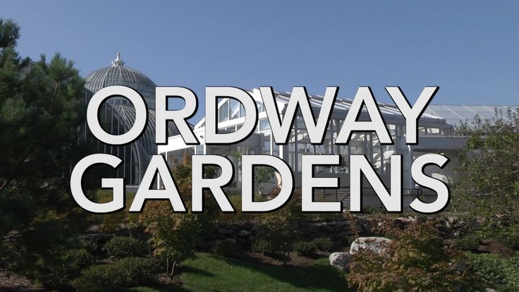 The Ordway Gardens at Como Park Zoo & Conservatory