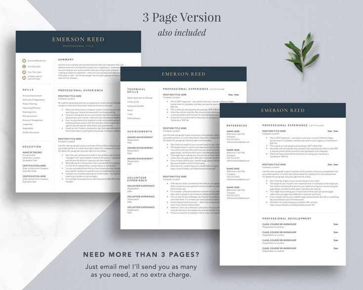 Modern executive resume template 2021 ceo resume template