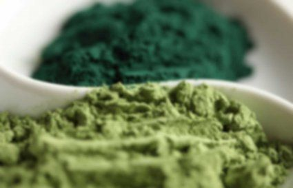 Spirulina has been quite a buzzing and popular topic for scientists, health food experts, and consumers since the 1960's when Vogue had claimed it to be a health food.