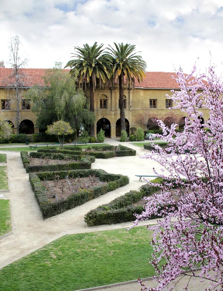 Campus Los Leones, Providencia