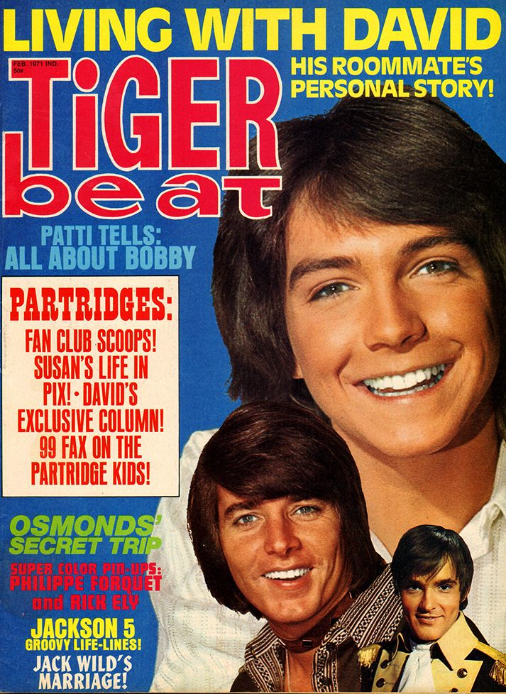 https://i.pinimg.com/736x/94/b2/09/94b209b5088acf7c8d5e2417516410ba--tiger-beat-magazine-covers.jpg