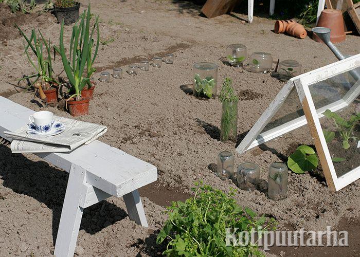 """Kasvimaalla pienet taimet kannattaa suojata tuulelta ja alkukesän kylmiltä öiltä. Lasipurkeista ja vanhoista ikkunoista saa helposti pieniä """"kasvihuoneita""""."""