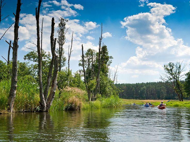 Najpiękniejsze miejsca w Polsce na wiosnę i majówkę - Poznaj Polskę