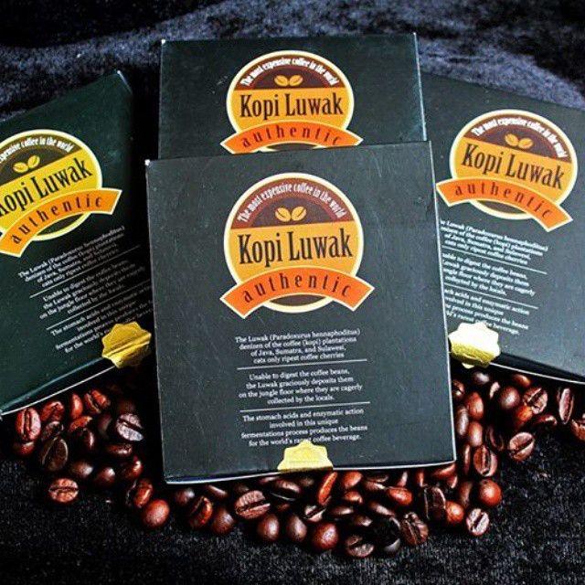 Kopi Luwak Asli | Untuk Pecinta Kopi Sejati  #luwack #wildcivet #civetcoffee #kopiluwak #luwak #poopcoffee #java #indonesia