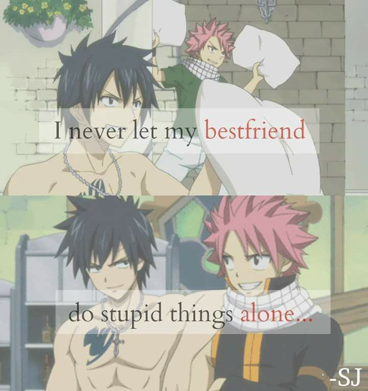 Gray and Natsu || Fairy Tail || Anime Quote