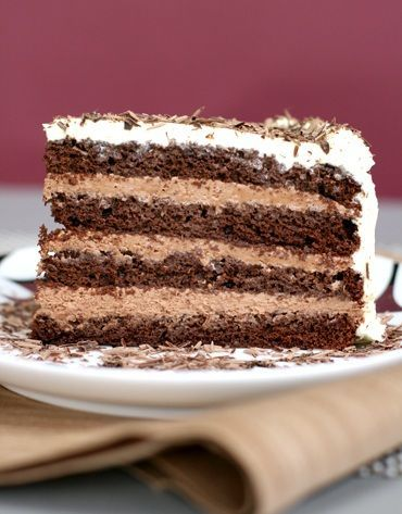 Chocolate cake with layers of mousse.