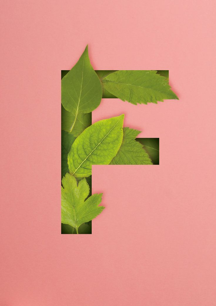 How to Create a Quick 3D Botanical Letter Effect in Adobe InDesign - Alphi Creative