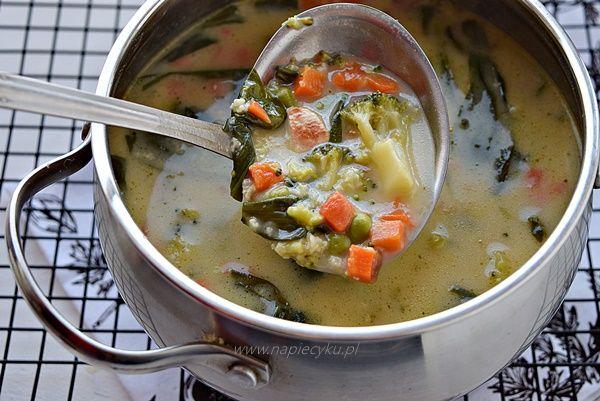 Zupa z warzywami, kurczakiem i kaszą jaglaną
