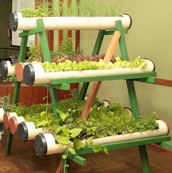Vertical garden using PVC pipes and supporting structure