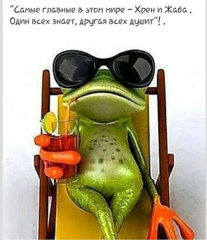 Хрен и жаба... 94b4eba3af4ec808ab090cd85ae7fc70.jpg (414×480)