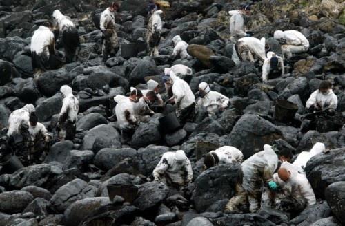 """Voluntarios limpian rocas llenas de """"chapapote""""."""