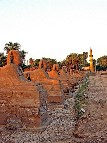The avenue of Sphinxes at Luxor Temple. These sphinxes combine the body of a lion with the head of Nectanebo I (380-363 BC). Luxor, Egypt