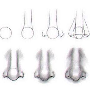 Wie zeichnet man Nasen, Augen, Haare und Lippen