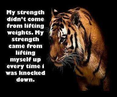 000 tiger quote determination Tiger quotes, Squat quotes