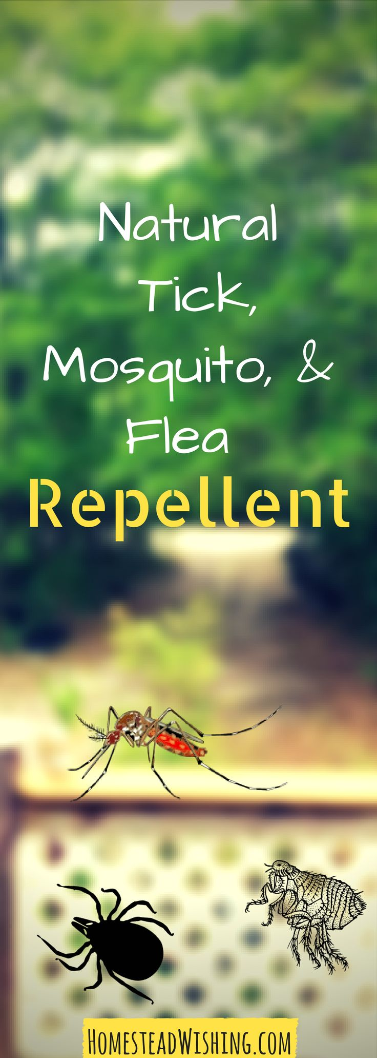 best 25 tick repellant ideas on pinterest tick repellent