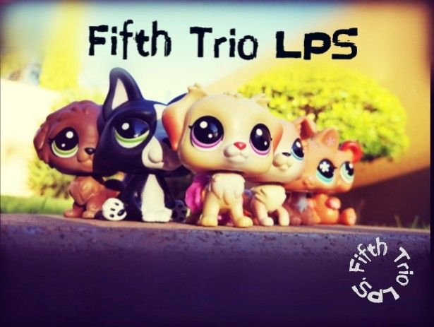 Welcome to my Pinterest board of Fifth Trio Lps photography. Check out my YouTube Channel too!