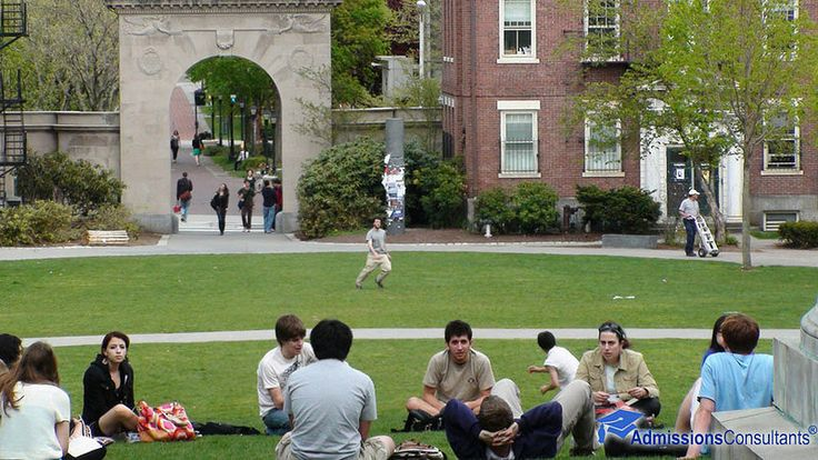Brown university admitted essays