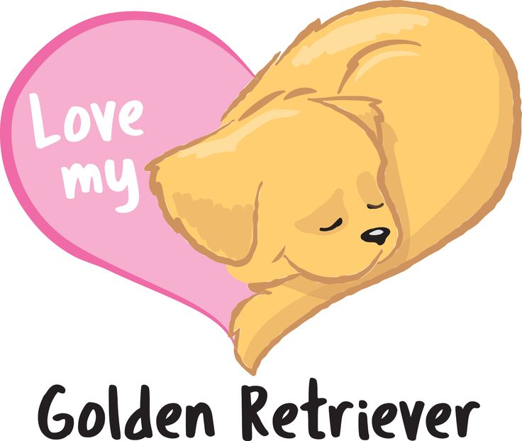 Cute heart shaped Golden Retriever illustration
