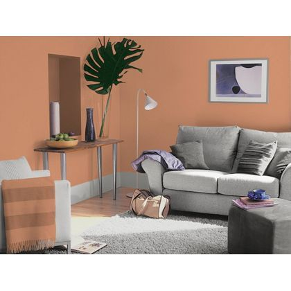Tuscan Terracotta Dulux paint - available now at Homebase in store and online at homebase.co.uk.