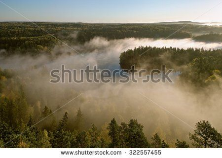 Stock Photo: Thick fog covering the forest and the lake in early morning landscape. Peaceful view from the Aulanko lookout tower in Finland.