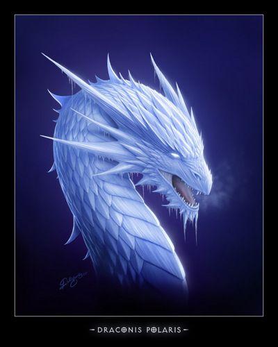 --| Dragon - Céleste |--