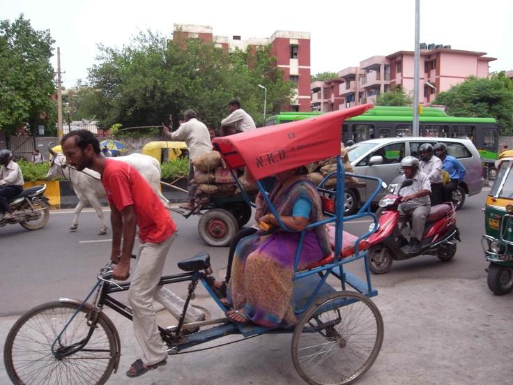 Delhi / India