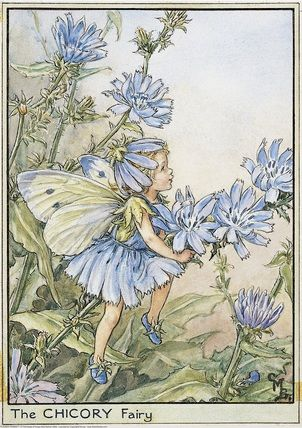 Chicory Fairy- Cicely Mary Barker - Flower Faries of the Wayside