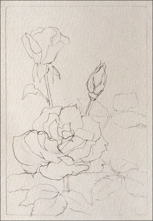 How To Paint Realistic Watercolor Roses. Good blog for painting other items and how to sell online.