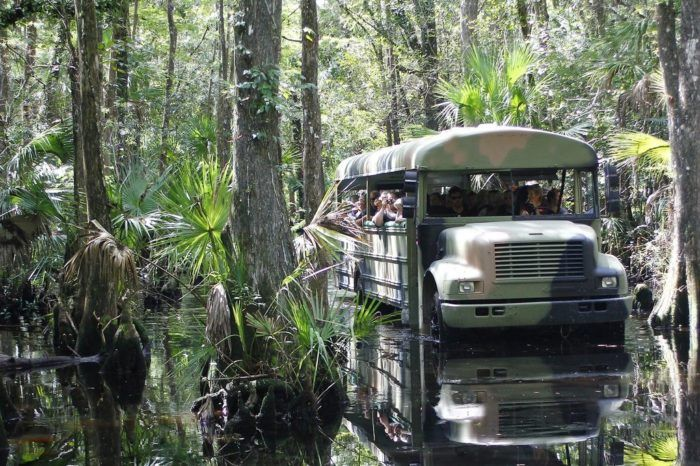 Florida | Travel | Outdoor | Tours | Unique Places | Attractions | Adventure