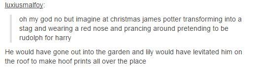 james potter - christmas :)