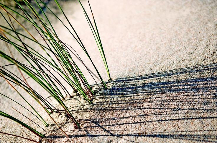 """""""Landscape_05"""" by Pedro Pinho, via 500px."""