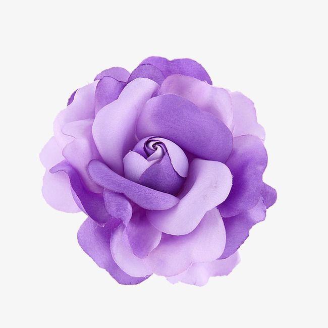 Flor morada, Purple, Flores, Hermosa Imagen PNG