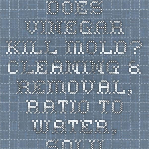 how to use vinegar to kill mold