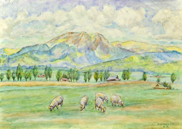 Pejzaż górski - Zakopane