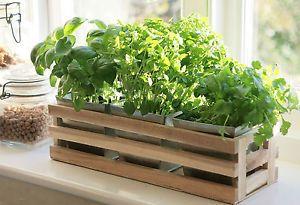 Kitchen Herb Window Planter Box Wooden Trough & Metal Plant Pots Indoor Garden