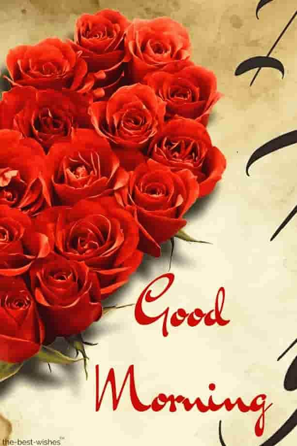 Good Morning Red Roses Good Morning Wishes Good Morning Good