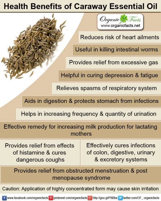 Health benefits of caraway essential oil can be attributed to its properties as a galactogogue, anti-histaminic, antiseptic, cardiac, anti-spasmodic, carminative, digestive, stomachic and vermifuge substance.